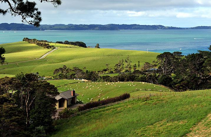 新西兰 图片